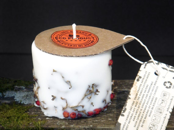 Icelandic soy wax candle. Rowan berry and Icelandic moss. Hand made. Apple/cinnamon scent.