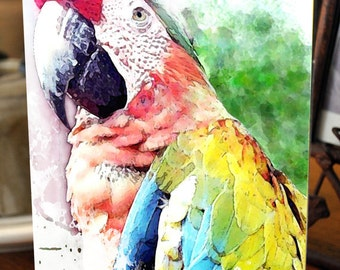Painted Macaw Blank Greeting Card - SPECIAL listing for Lesley