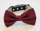 Burgundy Dog Bow Tie attached to dog collar, Chic dog Bow tie, Dog Lovers