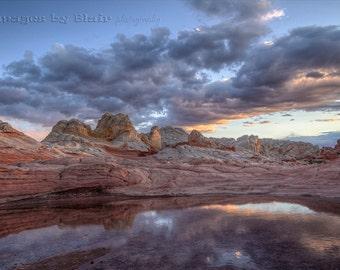 The Arizona Desert.