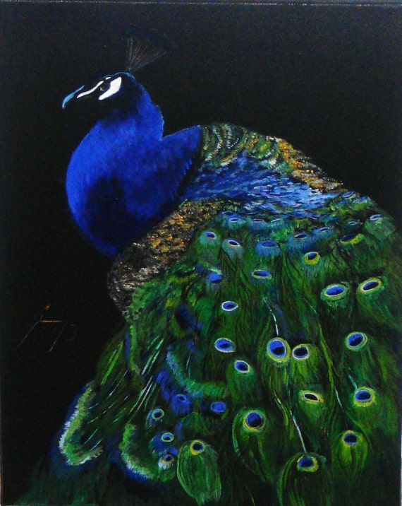 colorful peacock on black background original painting on