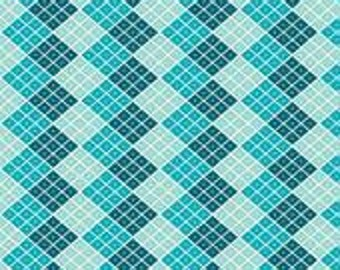Indie Checkers in Blue  by My Minds Eye for Riley Blake Fabrics Half  Yard Cut