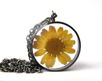 Yellow Daisy Resin Pendant Necklace - Real daisy in open back copper pipe bezel, Pressed Flower Jewelry - Resin Jewelry - Resin Necklace