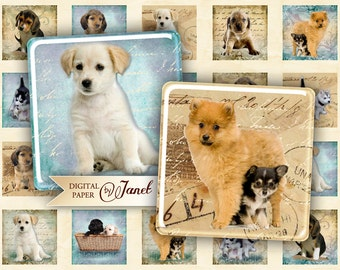 Dogs - squares image - digital collage sheet - 1 x 1 inch - Printable Download
