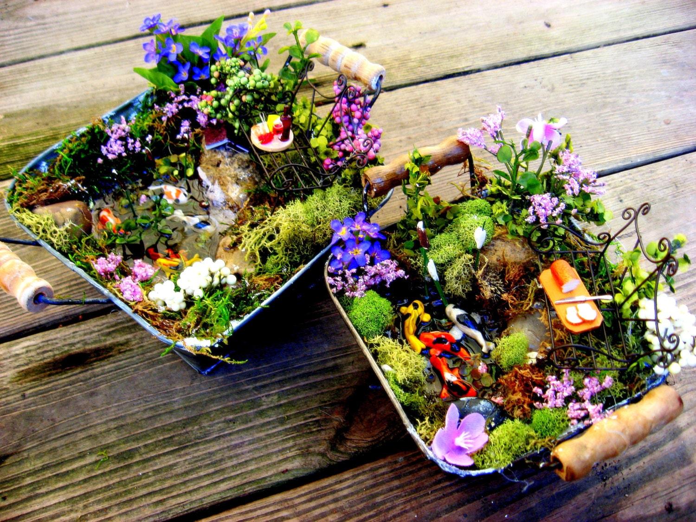 Large desktop fairy garden miniature koi ponds for Mini garden pond