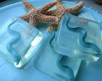 Eel Soap