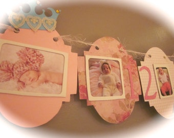 12 month picture banner newborn to one year birthday photo banner PICTURES included
