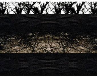 Beginnings - 5x7 Art Card, Mixed Media Photography