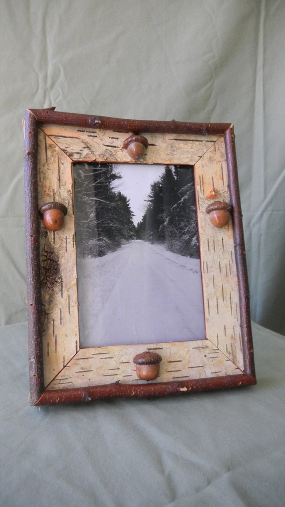 White birch picture frame snow covered by