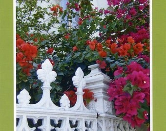 Nassau fence and flowers - Photo card
