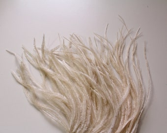 Champagne Ostrich Feather Fringe / 30cm for craft fascinator hairpiece hat