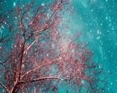 Sweet Dreams, 11x14 Nature Photography, Whimsical Starry Night Sky, Tree, Baby Girl Nursery, Fine Art Home Decor