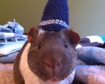 Wizard Guinea Pig Costume, Guinea Pig Hat, The Guinea Pig Wizard Hat, Guinea Pig Clothing, Guinea Pig Accessories, Guinea Pig Clothes