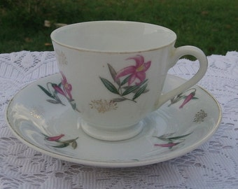Vintage Japan Cup and Saucer