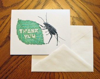 Thank You Cards - Thank You - Bug - Cricket - Set of 4 - Blank Notes