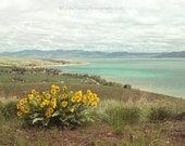 Bear Lake Spring-  Landscape photography 8x10
