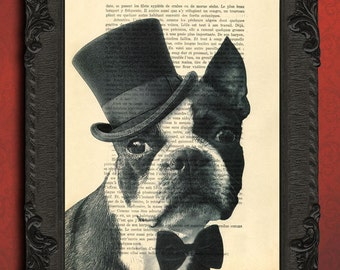 boston terrier artwork dog print on an antique upcycled book page