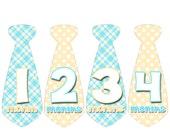 Monthly Onesie Tie Stickers Baby Boy Tie Stickers Month to Month Stickers Baby Shower Gift Baby Month Stickers Photo Prop 435
