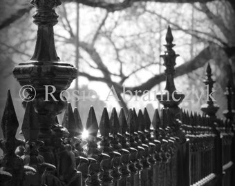 Fence at Lafayette Square Park, St. Louis, Digital Photo Print (by Rosie Abramczyk)