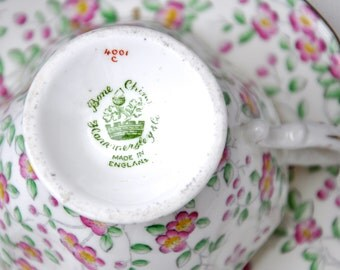 Chintz China Teacup and Saucer by Hammersley & Co. Bone China