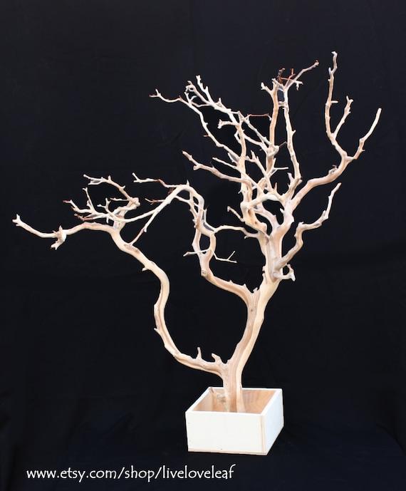 Sale Jewelry Tree Sand Blasted Manzanita Branch Jewelry
