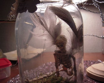 Fairy Skeleton Specimen in a  Mason Jar for Alchemy Wizardry Fantasy Geekery The Labrynth Voodoo Zombie TinkerBell