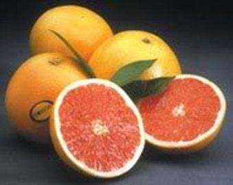 1/2 Ounce Grapefruit Essential Oil