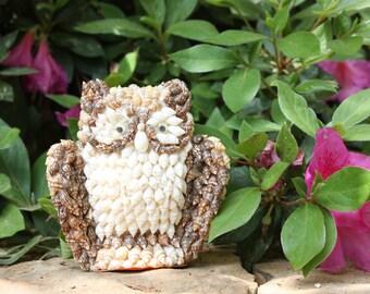 Sea shell owl // beach  decor // vintage sea shell art