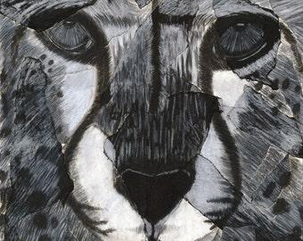 Cheetah Face, Print