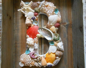 CUSTOM Beach Decor Seashell Letter, Seashell Initial - Seashell Letter - Shell Letter, Beach Decor, Any Letter