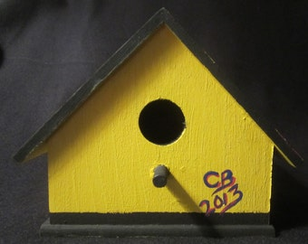 Pittsburgh Steelers Birdhouse with Shazaam