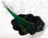 Black and Green Peacock Feather Hair Accessory Fascinator With Rhinestones