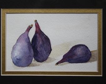 Framed Fresh Figs Watercolor