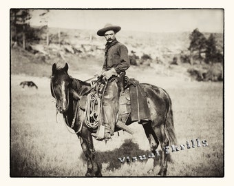 The American Cowboy  1888