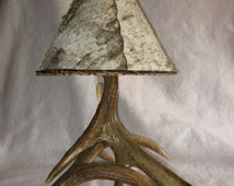 Small Moose antler lamp