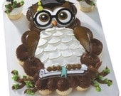 Graduation Owl Cake Kit