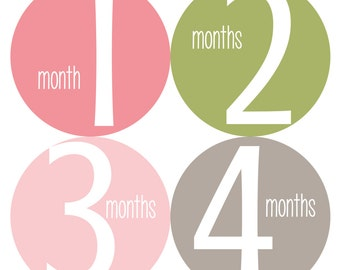 Monthly Baby Stickers, Baby Monthly Stickers, Bodysuit Stickers, Baby Girl Monthly Stickers - Pink, Green, Baby Girl, Baby Shower Gift