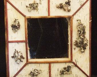 Rustic Lichen and Birch Mirror