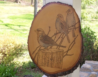 Three Sparrows On Tree Woodburning Pyrography
