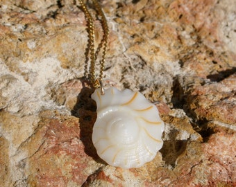 Floridian Whelk Shell Necklace