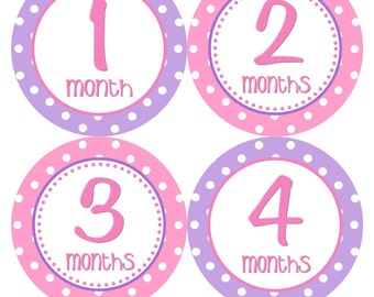 Monthly Milestone Stickers Baby Month Stickers Girl Pink Purple Bodysuit Stickers Monthly Girl Stickers Baby Shower Gift Photo Prop -Laila