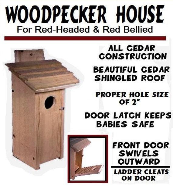 Downy Woodpecker House Woodpecker Cedar House