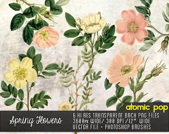 Instant Download // Springtime Flowers// Vintage Pink and White Graphic Design Vector, Decoupage PNG FIles, Photoshop Brushes Clipart