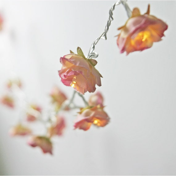 Rhubarb and Custard Longer Shabby Rose Fairy Lights by PamelaAngus