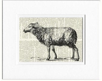 sheep dictionary page print.