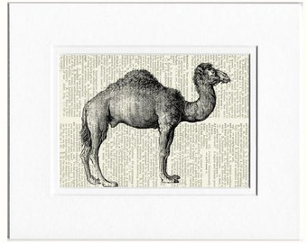 camel III dictionary page print
