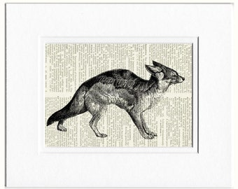 fox I dictionary page print