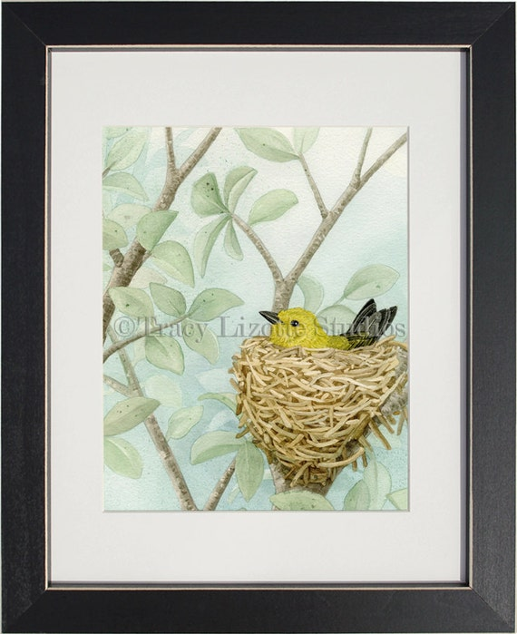 Bird Tree with Yellow Warbler - archival watercolor print by Tracy Lizotte