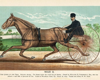 1882 Antique Print of Race Horses - Legendary Racehorse Maud S.
