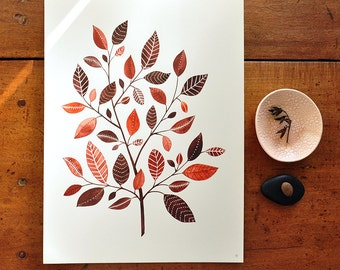The Copperleaf Tree - 8x10 Botanical Watercolor Collection